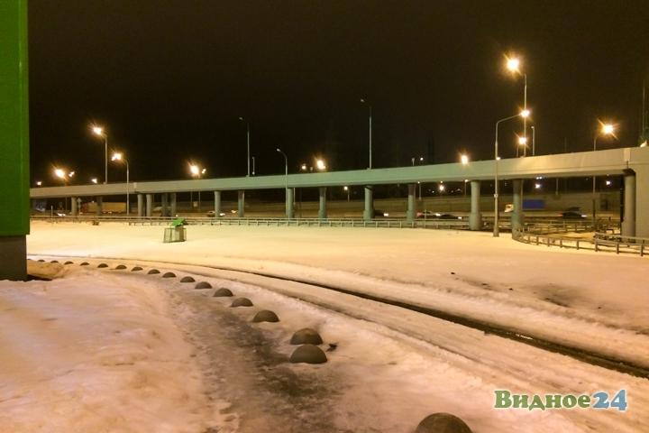 Состоялось пробное открытие гипермаркета «Леруа Мерлен» на пересечении МКАД и Каширского шоссе фото 27