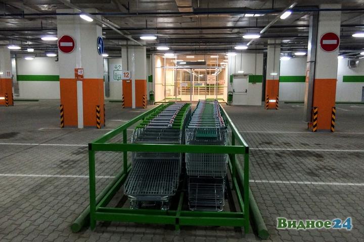 Состоялось пробное открытие гипермаркета «Леруа Мерлен» на пересечении МКАД и Каширского шоссе фото 17