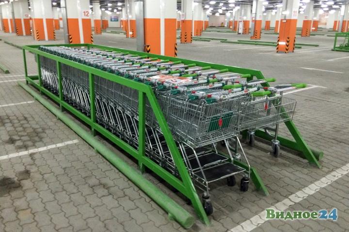 Состоялось пробное открытие гипермаркета «Леруа Мерлен» на пересечении МКАД и Каширского шоссе фото 16