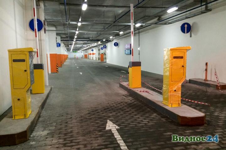 Состоялось пробное открытие гипермаркета «Леруа Мерлен» на пересечении МКАД и Каширского шоссе фото 21