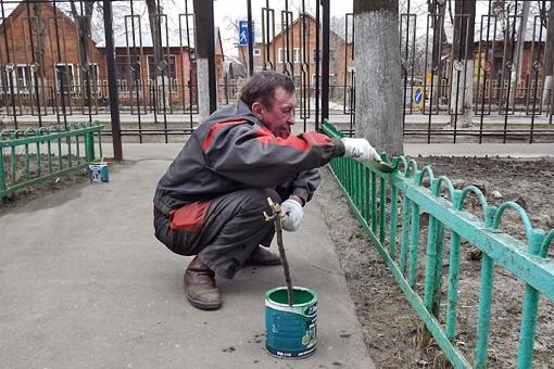 На территории Ленинского района объявлен месячник благоустройства. План мероприятий
