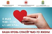 5 мая в кинотеатре «Искра» пройдет День донора. «Красный крест» приглашает сдать кровь