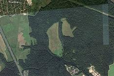 Группа депутатов обратилась к главе района в связи с планируемой застройкой поляны южнее деревни Коробово