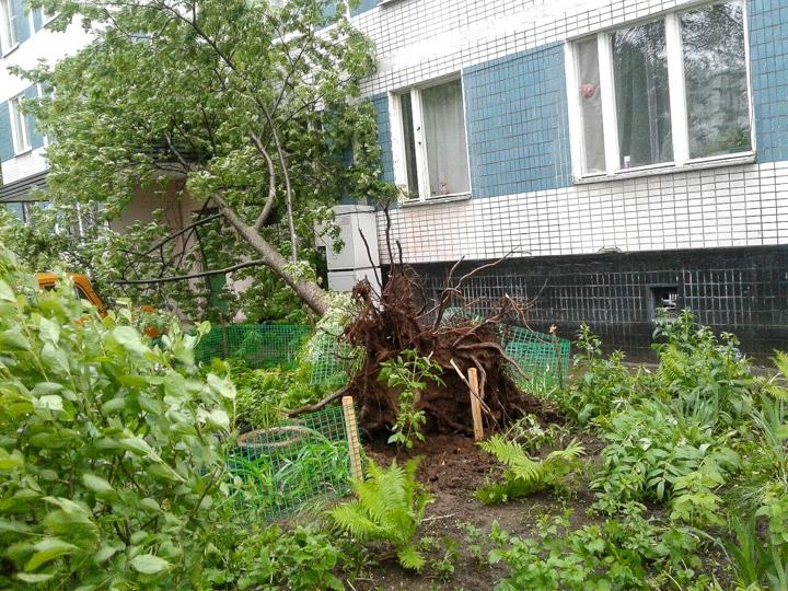 Последствия урагана в Видном и Ленинском районе. Фоторепортаж фото 16