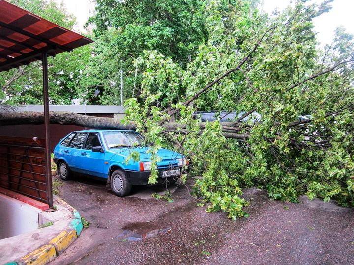 Последствия урагана в Видном и Ленинском районе. Фоторепортаж фото 14