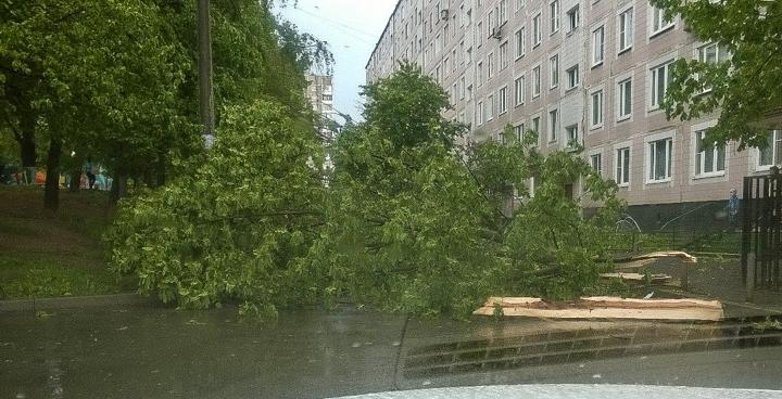Последствия урагана в Видном и Ленинском районе. Фоторепортаж фото 18