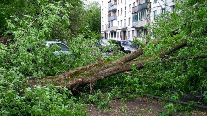 Последствия урагана в Видном и Ленинском районе. Фоторепортаж фото 27
