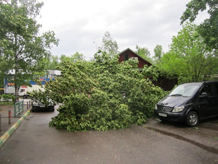Последствия урагана в Видном и Ленинском районе. Фоторепортаж фото 12