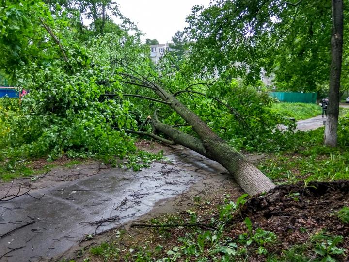 Последствия урагана в Видном и Ленинском районе. Фоторепортаж фото 23