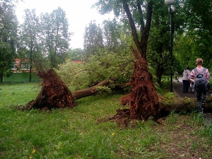 Последствия урагана в Видном и Ленинском районе. Фоторепортаж фото 15
