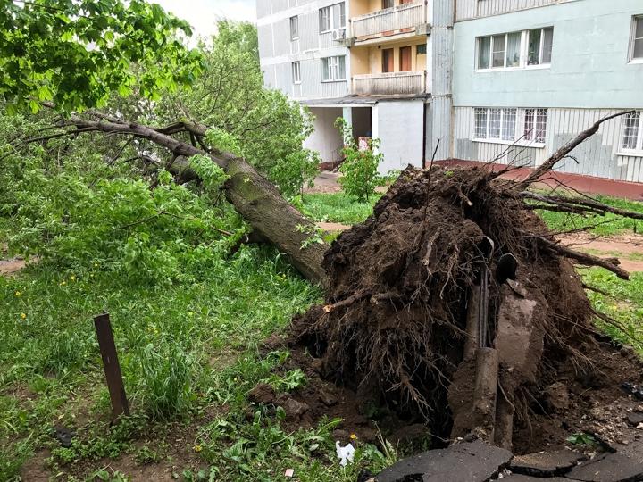 Последствия урагана в Видном и Ленинском районе. Фоторепортаж фото 25