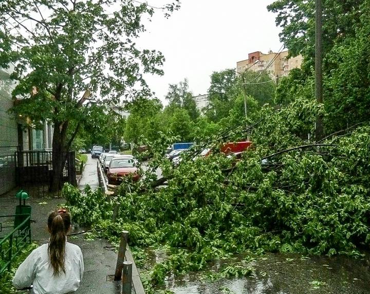 Последствия урагана в Видном и Ленинском районе. Фоторепортаж фото 17