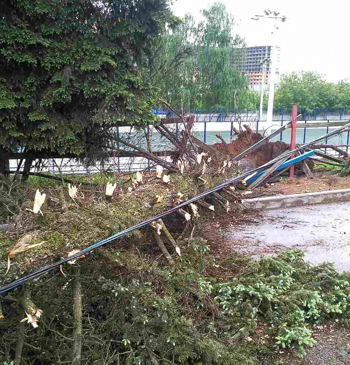 Последствия урагана в Видном и Ленинском районе. Фоторепортаж фото 5