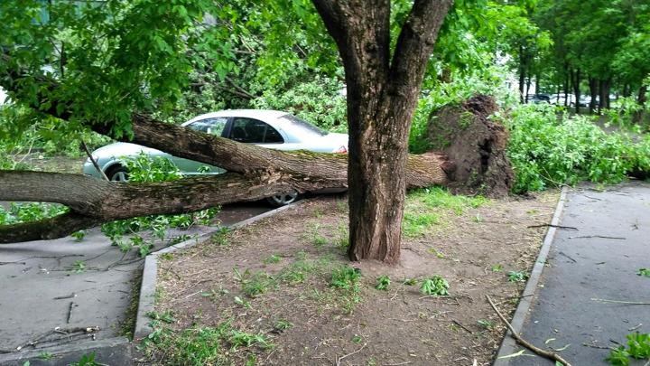 Последствия урагана в Видном и Ленинском районе. Фоторепортаж фото 20