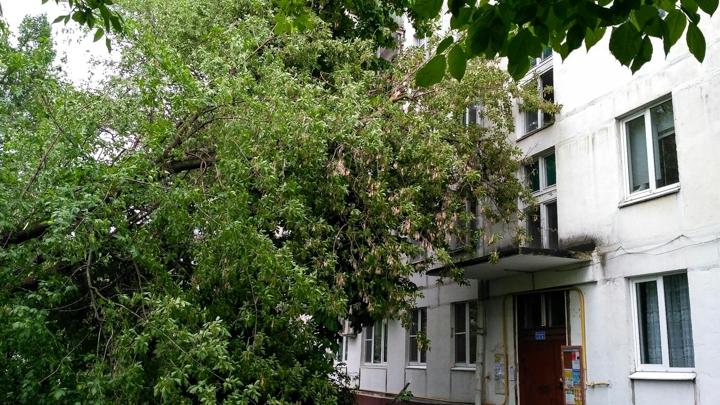 Последствия урагана в Видном и Ленинском районе. Фоторепортаж фото 19