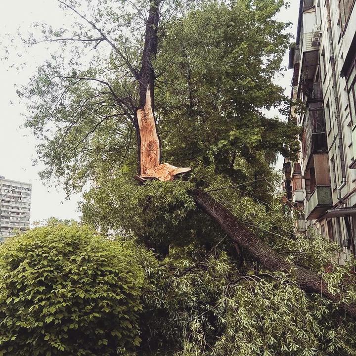 Последствия урагана в Видном и Ленинском районе. Фоторепортаж фото 21