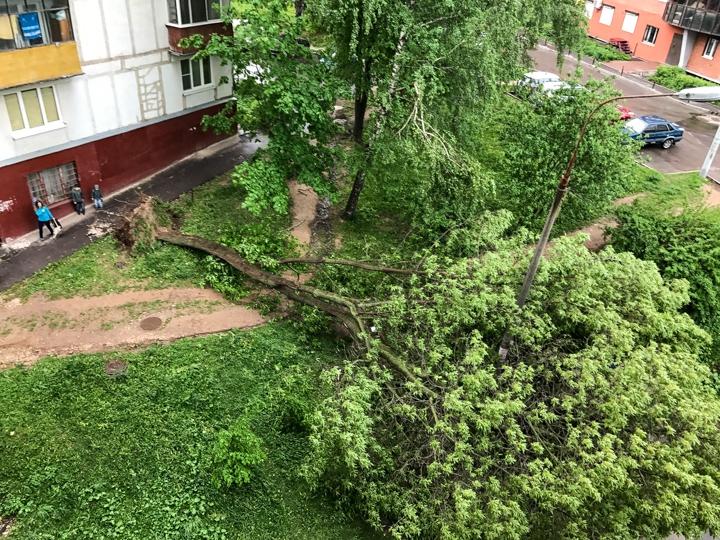 Последствия урагана в Видном и Ленинском районе. Фоторепортаж фото 24