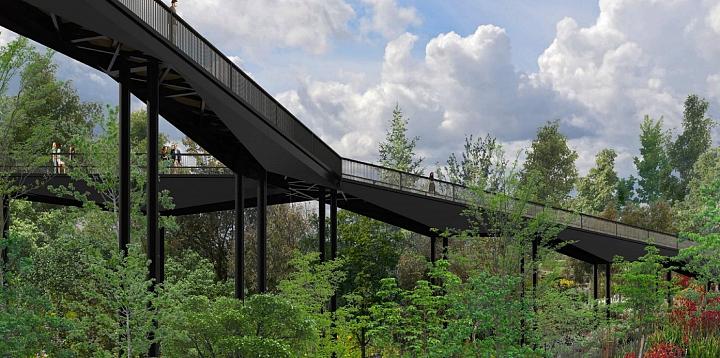 Состоялось обсуждение проекта «Зеленая Река» и реставрации усадьбы «Тимохово-Салазкино» фото 5