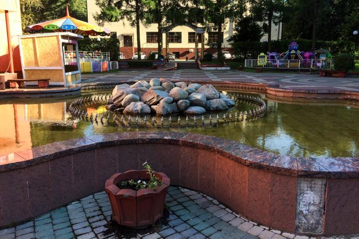 Видное – город неработающих, заброшенных и закопанных фонтанов. Фоторепортаж фото 12