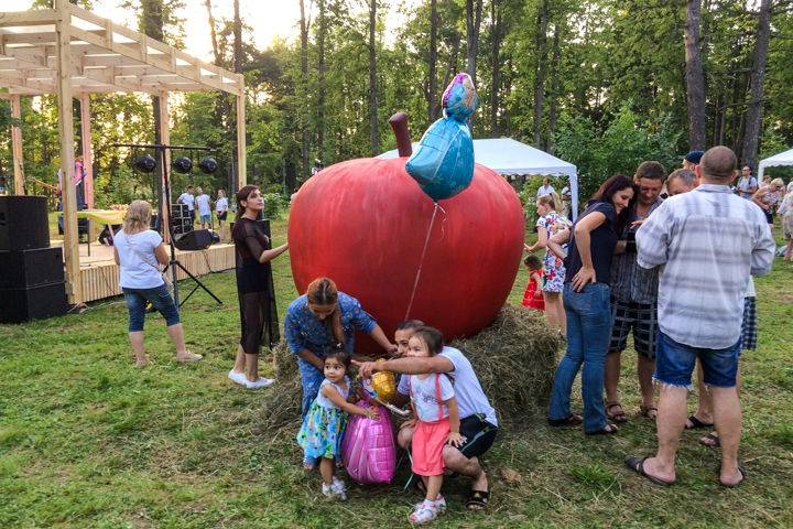 В Расторгуевском парке города Видное прошел фестиваль «Яблочный спас». Фоторепортаж фото 5
