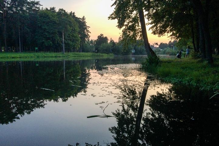 В Расторгуевском парке города Видное прошел фестиваль «Яблочный спас». Фоторепортаж фото 30