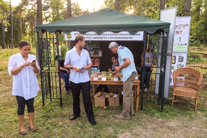 В Расторгуевском парке города Видное прошел фестиваль «Яблочный спас». Фоторепортаж фото 11