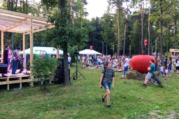 В Расторгуевском парке города Видное прошел фестиваль «Яблочный спас». Фоторепортаж фото 29