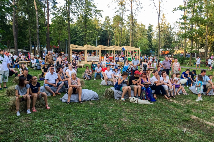 В Расторгуевском парке города Видное прошел фестиваль «Яблочный спас». Фоторепортаж фото 8