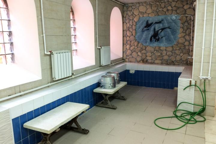 Видновская городская баня вновь открылась. Фоторепортаж фото 26