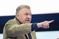 Жириновский предложил в лесу между городом Видное и совхозом им. Ленина создать «Деревню гномов»