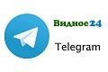 Подписывайтесь на Telegram-канал «Видное 24»