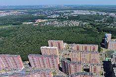 Из-за слабой активности видновчан на портале «Добродел» лес за 6-микрорайоном не будут благоустраивать