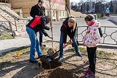 12 мая пройдет масштабная акция по посадке деревьев «Лес Победы». Адреса площадок