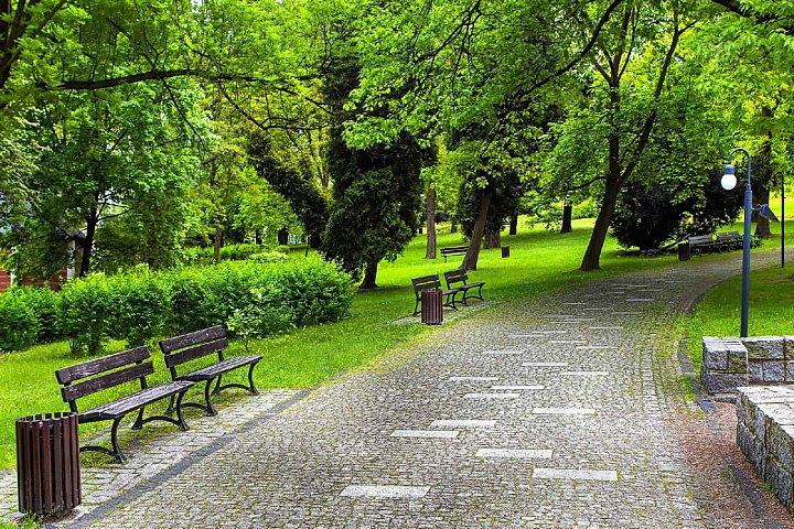 Грудинин и Венцаль планируют создать в Видном один из лучших парков в Подмосковье