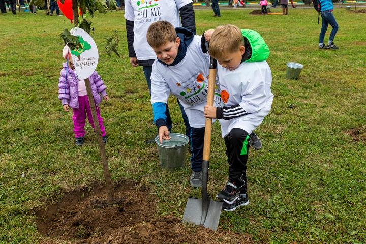 22 сентября в Видном и Ленинском районе состоится масштабная акция по посадке деревьев «Наш лес. Посади свое дерево»