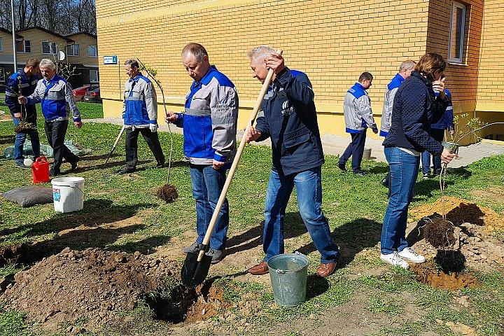Коксогазовый завод «Москокс» посадил сиреневую аллею в ЖК «Видный»