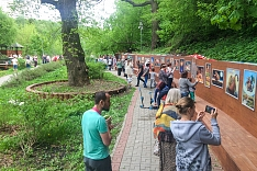 В Тимоховском парке открылась «Галерея под открытым небом» из 54 картин. Фоторепортаж