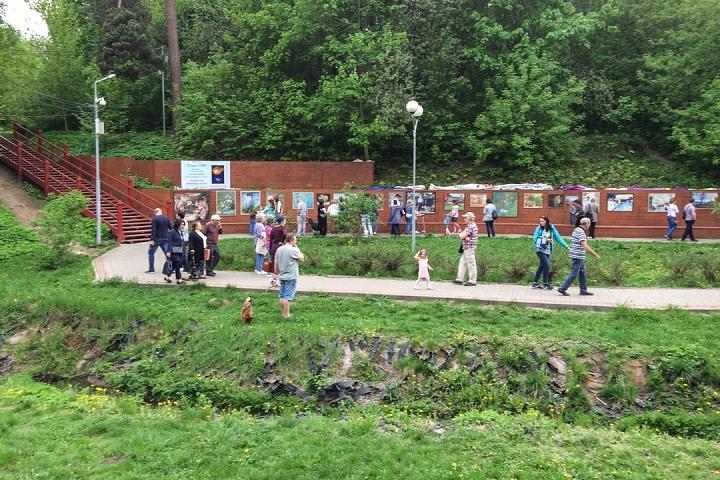 В Тимоховском парке открылась «Галерея под открытым небом» из 54 картин. Фоторепортаж фото 13
