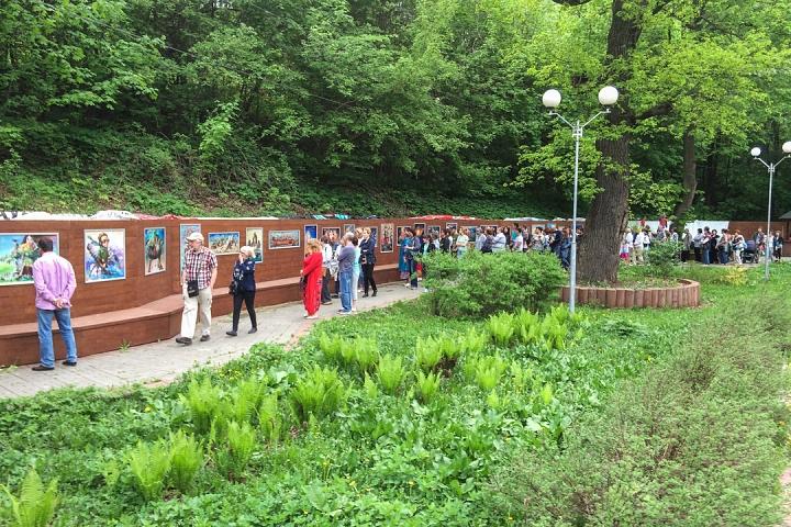 В Тимоховском парке открылась «Галерея под открытым небом» из 54 картин. Фоторепортаж фото 9