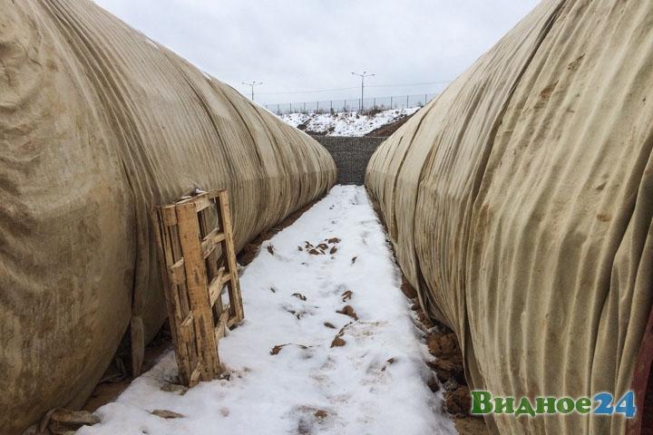 О строительстве дороги-выезда на трассу М-4 «Дон». Февраль 2020. Фоторепортаж фото 35