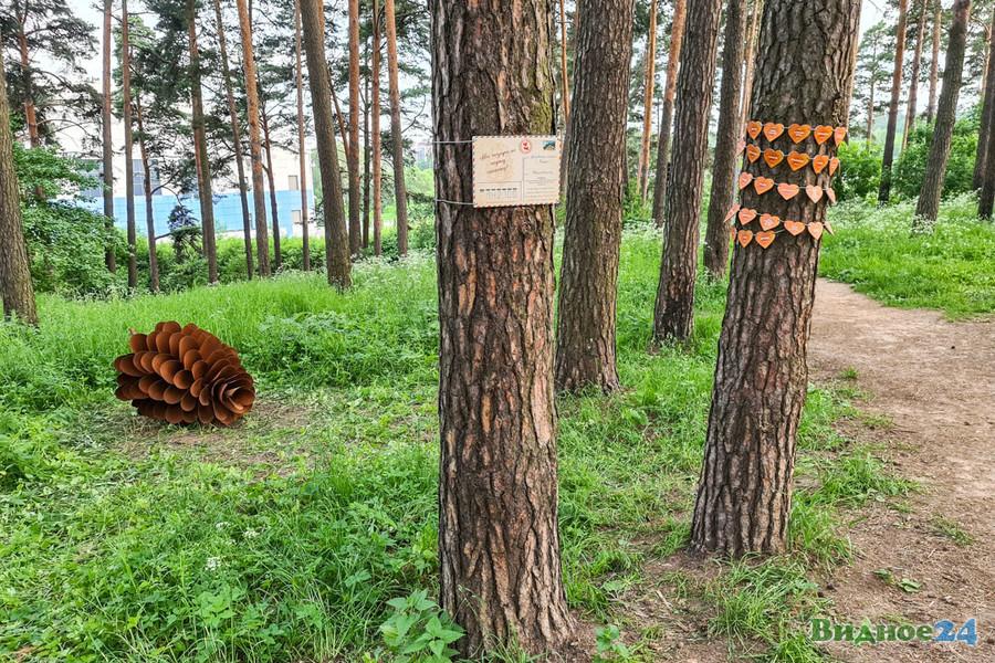 narodnaya-shishka-6.jpg