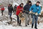 """В """"Тимоховском овраге"""" состоялся субботник. Жители разгребали кучи поваленных деревьев и кустарников. Фоторепортаж"""